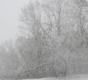 Lumine veebruari lõpp