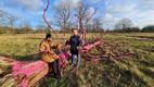 Tuuleiilid said Saaremaa kuulsale roosale tammele saatuslikuks.