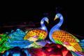 Light sculptures at the