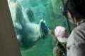 Таллиннский зоопарк.