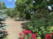 Põltsamaa saab 95. sünnipäevaks Roosisaare korrastatud puhkeala