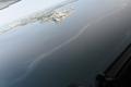Merereostus Kopli lahel.