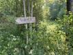 Место встречи перед походом к хижине для наблюдения за медведями.