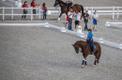 Ratsutajate olümpiaeelne trenn