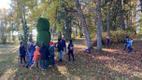 Парк перед школой Иллука теперь украшает сова.