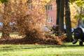 Осень в Кадриорге.