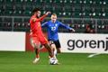 Eesti - Wales jalgpalli MM-valikmäng