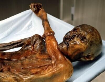 Ötzi säilmed Lõuna-Tirooli ajaloomuuseumis.