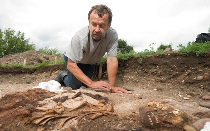 Arheoloogiadoktor Jüri Peets kaevamistel Salme külas kust leiti viikingilaev inimsäilmetega