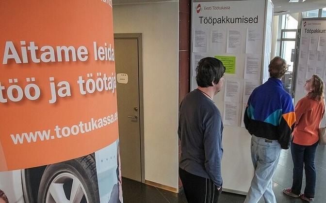 Job ads at a Töötukassa-organized job fair.