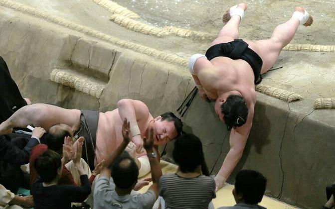Hakuho ja Harumafuji