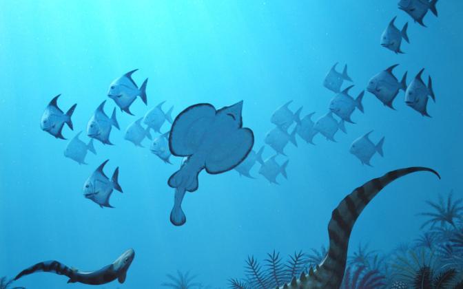 Pärast Hangenbergi sündmust ujusid maailmameres ringi peamiselt väikesed kalad.