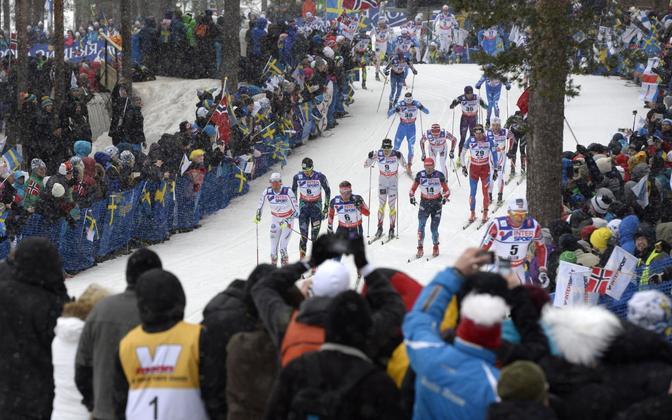 Faluni 2015. aasta suusa MM-i meeste 50 km sõit