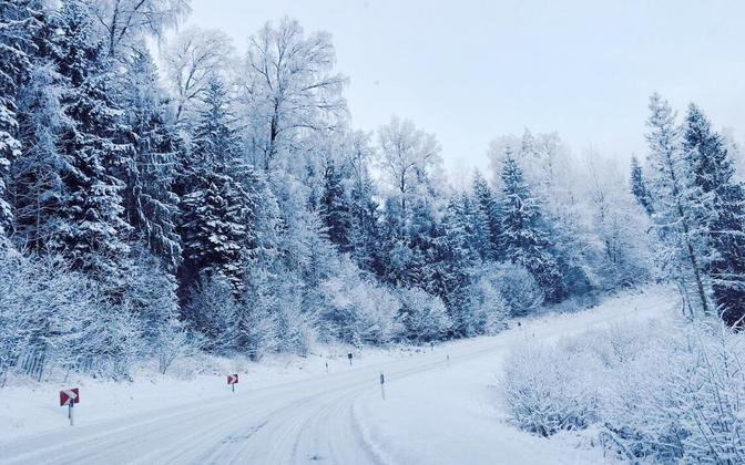 Snow-covered road in Otepää.
