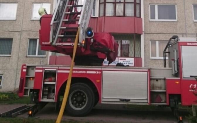 При тушении пожара использовали специальную технику.