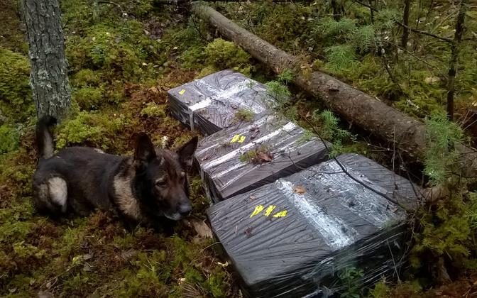 PPA service dog Como and packs of contraband cigarettes found at the border. Photo is illustrative.