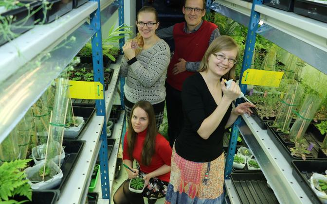 Researchers at the University of Tartu contributed to a breakthrough in understanding CO2 perception in plants.