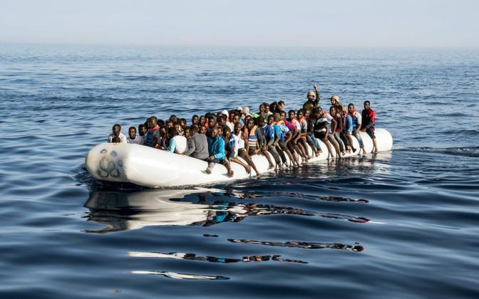Migrandid.