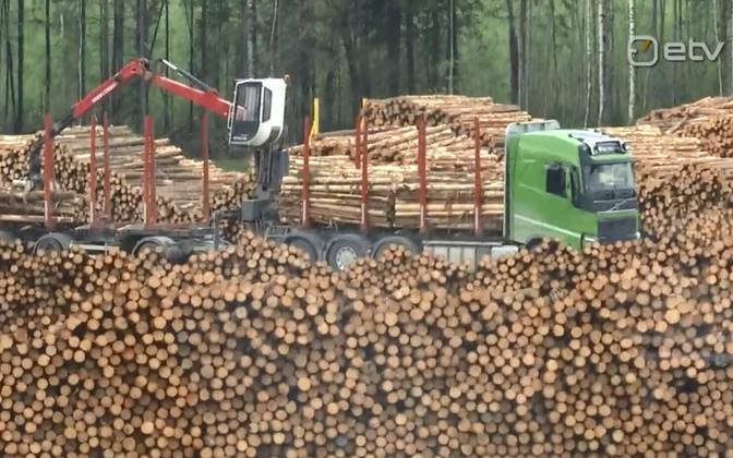 Forestry is one of Estonia's most important industries.