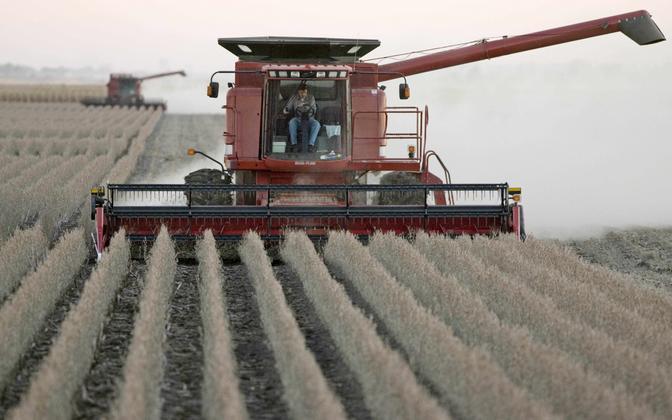 Sojaubade kasvatamine Iowa osariigis.