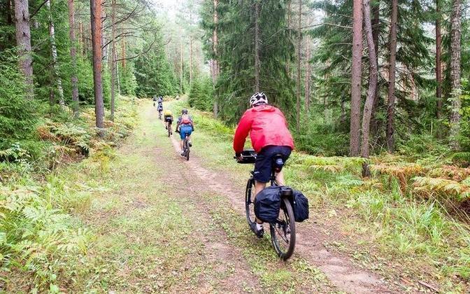 Alutaguse is located in Northeastern Estonia.