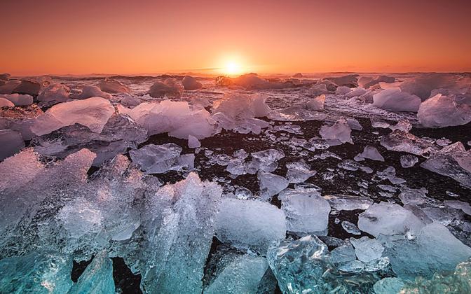 Arktika merejää sulab, kuid kõik pole kadunud.