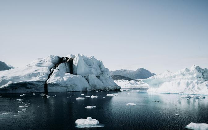 Gröönimaa liustike sulamise juures mängib põhirolli lumikate.