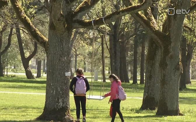 A child's swing in a Pärnu park (picture is illustrative).