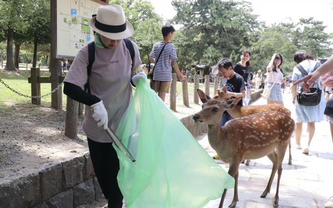 Единственная возможность избежать дальнейшей гибели животных – убирать мусор.