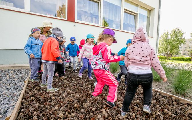 A new working party is to be convened to get a kindergarten curriculum approved.