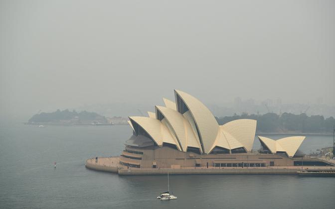 Sudu Sydney kohal.
