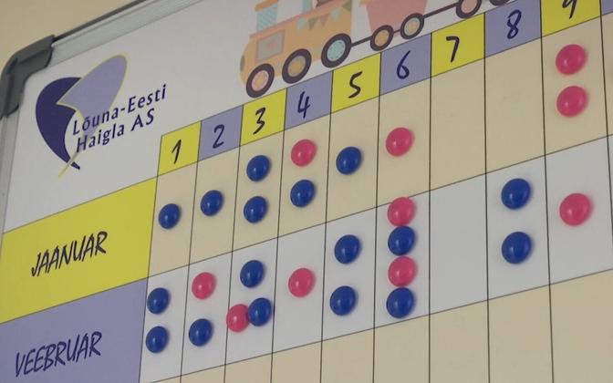 Births chart at South-Estonian Hospital in Võru.