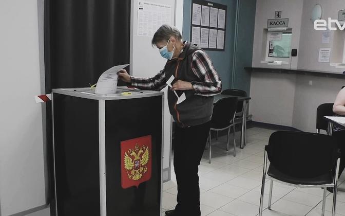Голосование по внесению поправок в Конституцию РФ (Нарва).