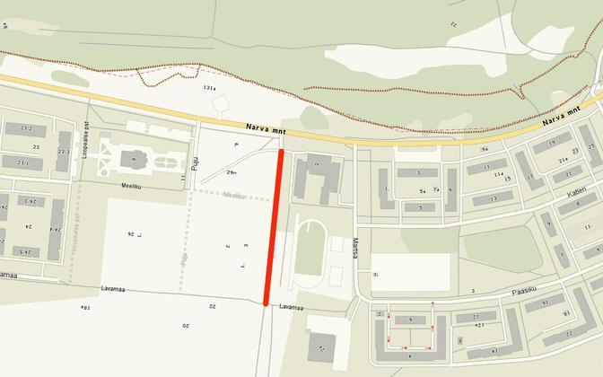 Будет проложена асфальтированная дорога протяженностью 250 метров и шириной 3,5 метра.