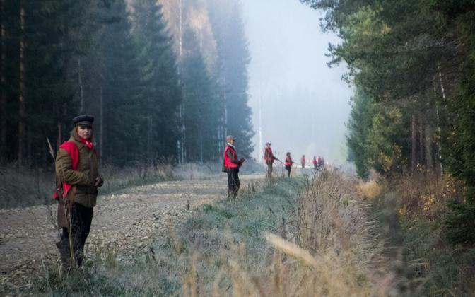 Охотники в красных и оранжевых жилетах.