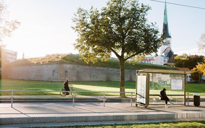 Cyclist by Tallinn's Old Town.