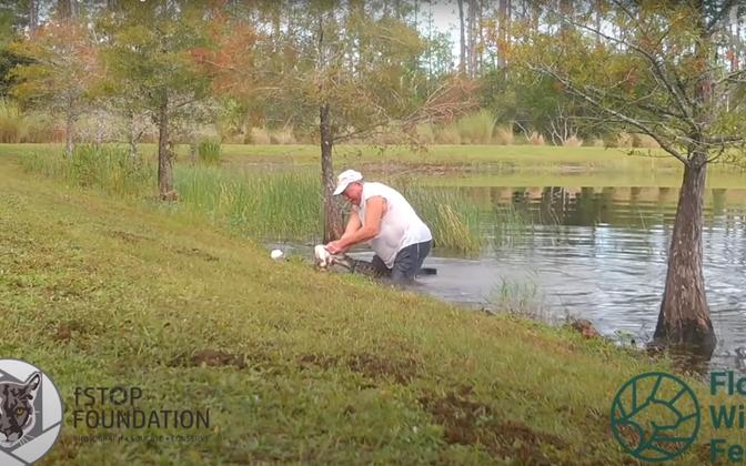 74-aastane Richard Wilbanks hüppas tiiki, et vabastada oma koer Gunner alligaatori lõugade vahelt