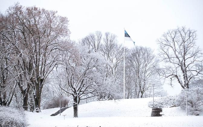 Snow above Vabaduse väljak in central Tallinn.