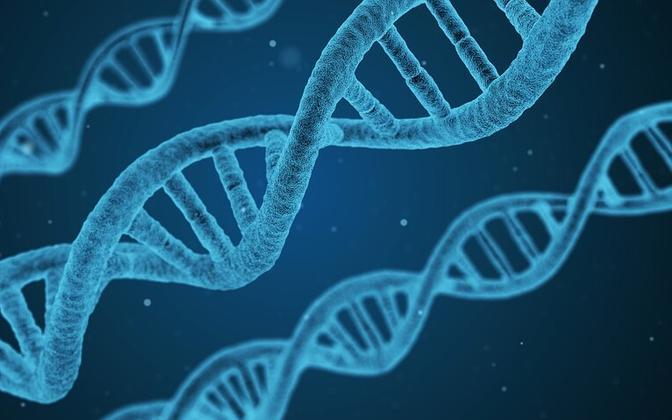 DNA molekulid kunstniku kujutuses.