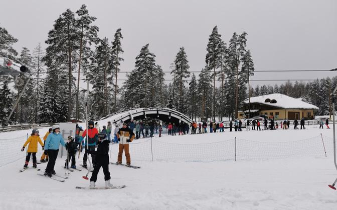 Skiers in the snow.