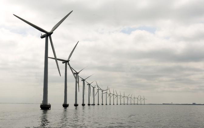 An offshore wind farm (photo is illustrative).