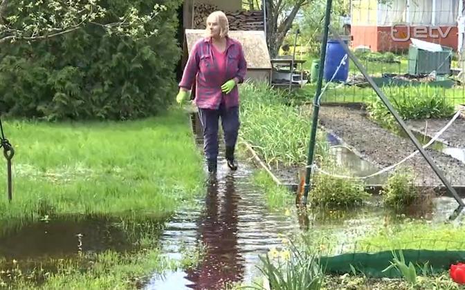 Jelena Rogatsova in her overflooded garden