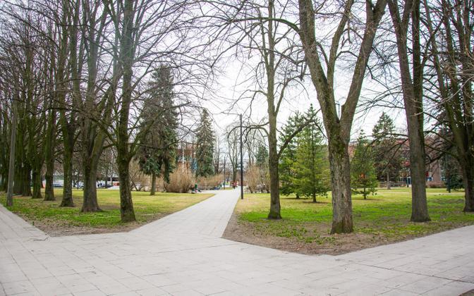 Tartu kesklinna park, mille kohale võib südalinna kultuurikeskus tulla.