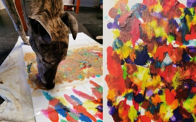 Koerte loodud maaliteostega loodetakse koguda raha Inglismaal Redcaris asuva loomapäästekeskuse jaoks
