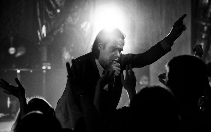 Fotol The Bad Seeds'i ninamees Nick Cave.