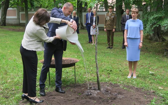 Islandi president Guðni Th. Jóhannesson ja esimene leedi Eliza Reid istutasid 2018. aasta juunis Kadrioru parki tamme, tähistamaks Eesti Vabariigi 100. sünnipäeva.
