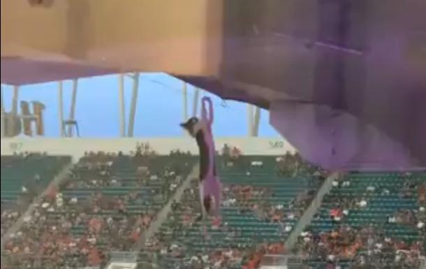 Hulkuv kass pääses Miami staadionile ning sattus ohtlikusse olukorda. Õnneks ootasid teda all fännid, kes püüdsid kassi Ameerika lipu abil kinni.