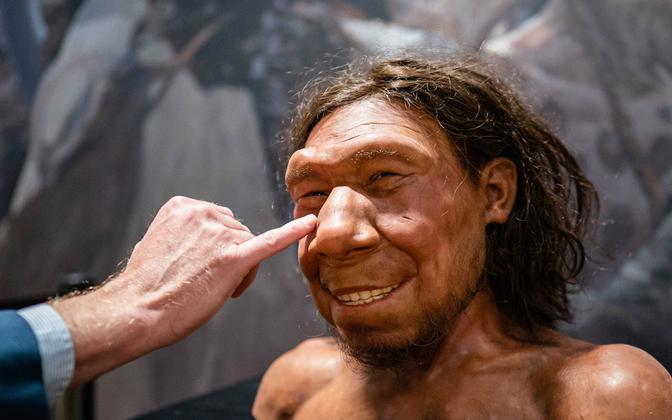 Neandertallase näo rekonstruktsioon.