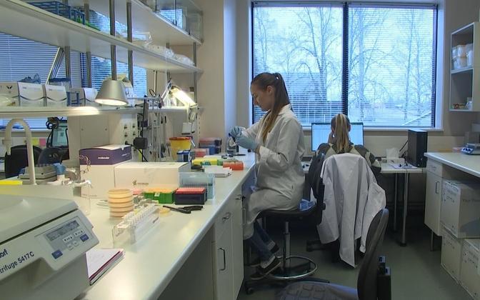 Научная лаборатория. Иллюстративное фото.