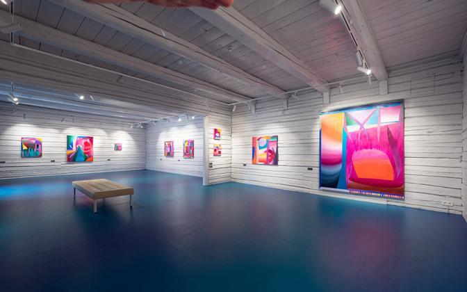 """Kristi Kongi näitus ,,Kujuteldavad olendid videvikus 2"""""""